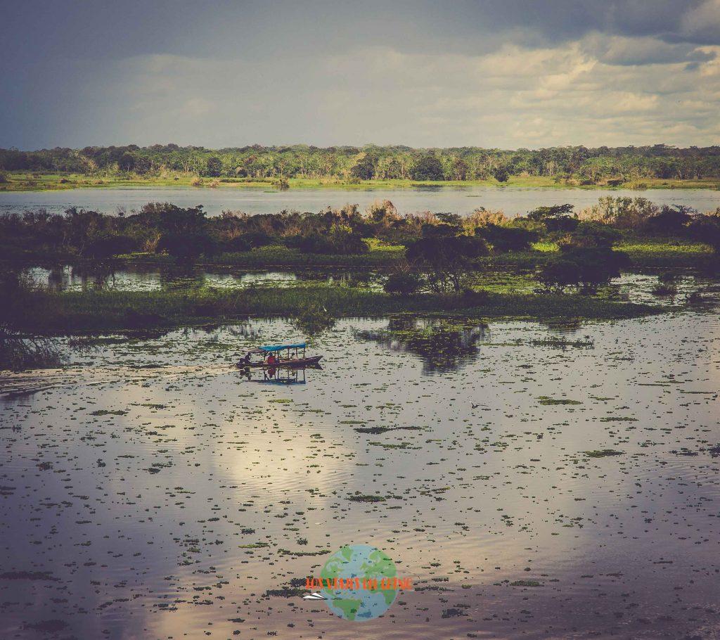 El amazonas, el río más grande del mundo