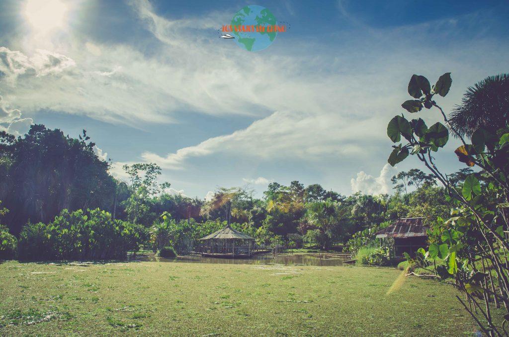 fundo Pedrito, Iquitos