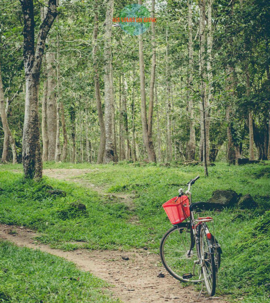 Ir en bicicleta a Angkor Wat
