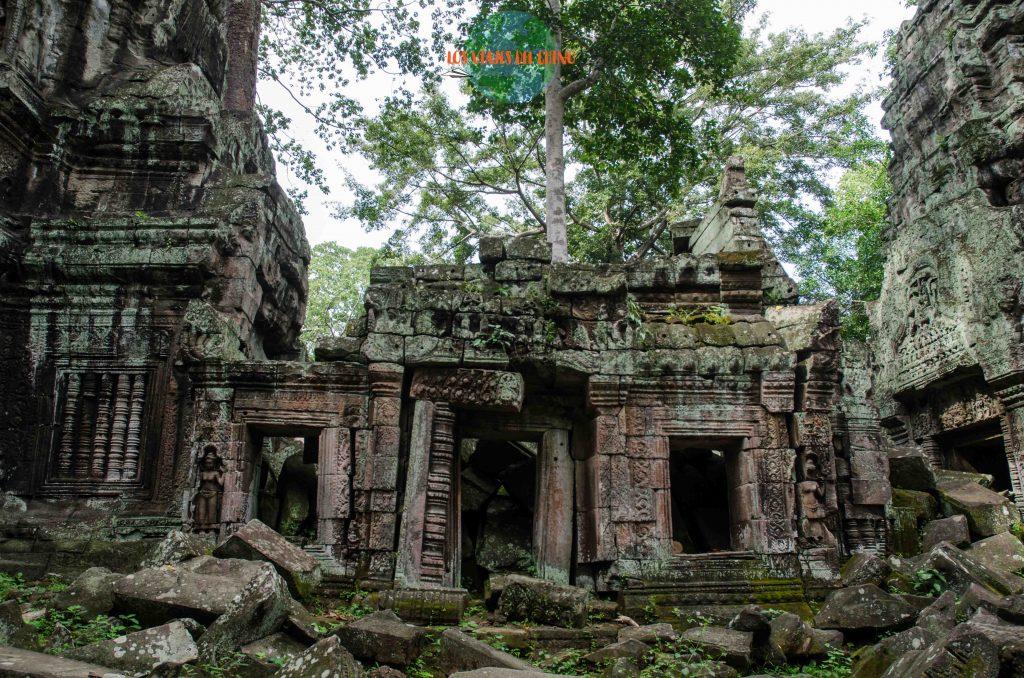 disfruta de los templos de Angkor Vat